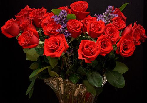 Цветы букеты большие анимация