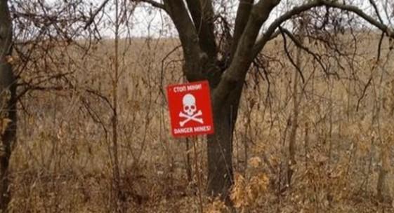Началось разминирование территории вблизи Петровского— ДНР