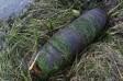 Подростки в реке Кальмиус нашли снаряд ВОВ