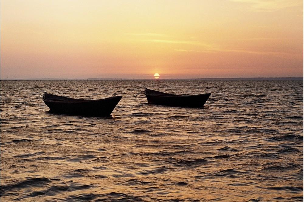 рыбацкие лодки вышли в море
